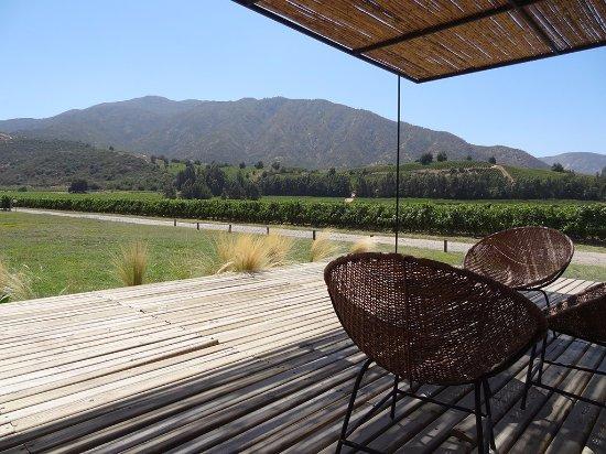 Santa Cruz, Chile: Las Ninas Wine Shop