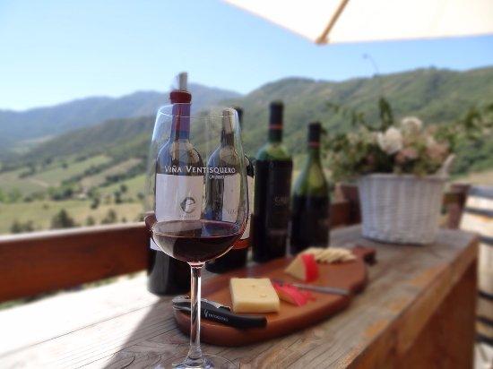 Santa Cruz, Chile: Ventisquero Wine Tasting in Apalta Valley