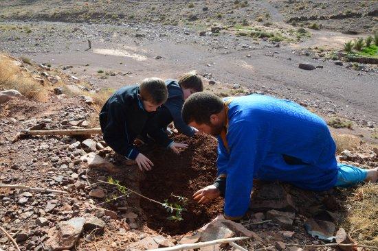 Ouednoujoum Ecolodge: plantation de notre olivier