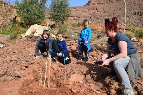 Ouednoujoum Ecolodge: ma famille devant l'olivier une trace a jamais