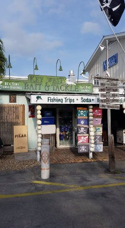 Live Bait Lounge at Key West Bait and Tackle
