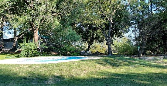 Katima Mulilo, Namibia: Pool surrounded by massive indigenous trees