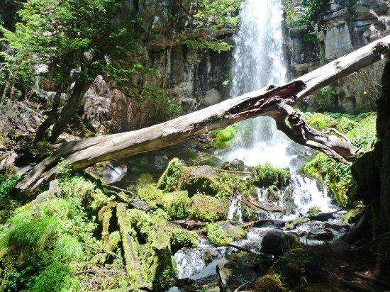 Lake Norquinco: Cascada Newen Folil