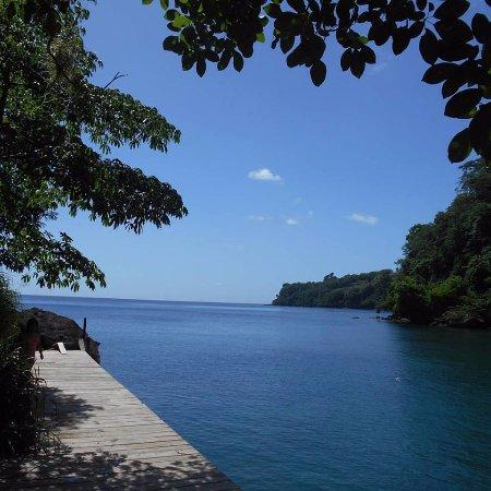 Saint John Parish, Grenada: Swim in our bay - snorkel among the fish and coral.