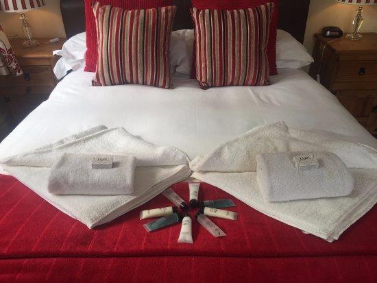 تشيستر هاوس جيست هاوس: Double en-suite Room