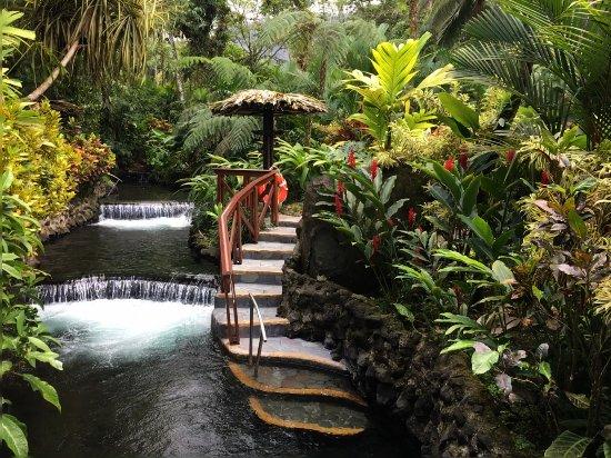 Tabacon Thermal Resort & Spa: Thermal Hot Springs