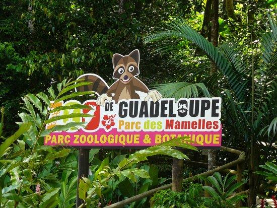 Parc des Mamelles, le Zoo de Guadeloupe: entrée du parc