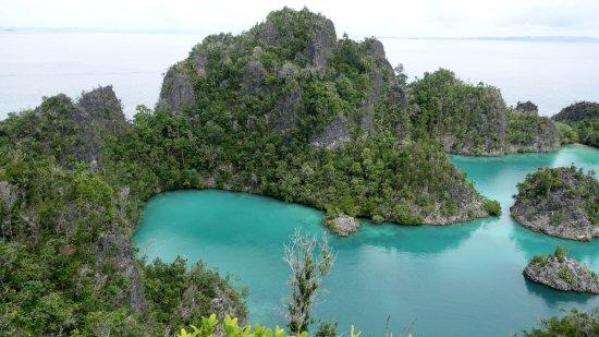 Raja4Divers Resort: View over Raja Ampat