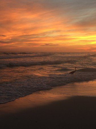 Crystal Sands Beach: The most amazing sunsets ever
