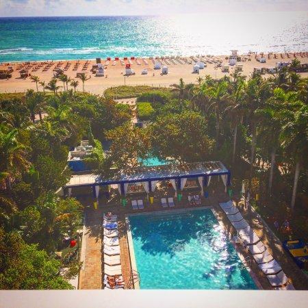Shore Club South Beach Photo