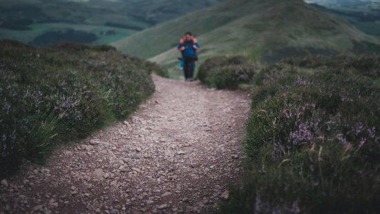 Patrice Mestari Photography: Have a walk