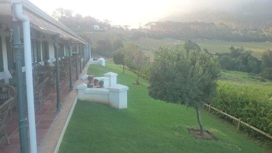 """Констанция, Южная Африка: DSC_0037_1_large.jpg"""""""