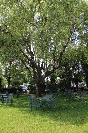Restaurant Mariuccia: Parco del nostro Hotel & Ristorante in cui organizziamo Banchetti e Matrimoni