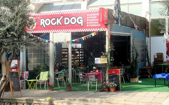 Dog Friendly All Inclusive Resorts Uk