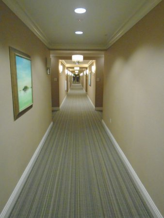 Ayres Hotel Fountain Valley/Huntington Beach: Hallway