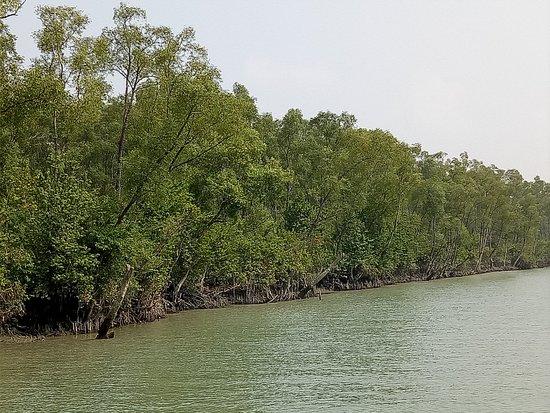Barisal Division, บังกลาเทศ: Haringhata, Taltali, Barguna, Bangladesh