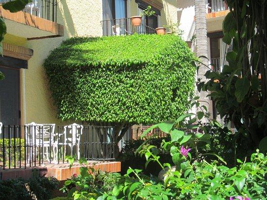 Hacienda Buenaventura Hotel & Mexican Charm All Inclusive: todo el jardin estaba super cuidado y original!