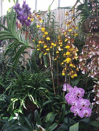 Biltmore Gardens: Beautiful and peaceful