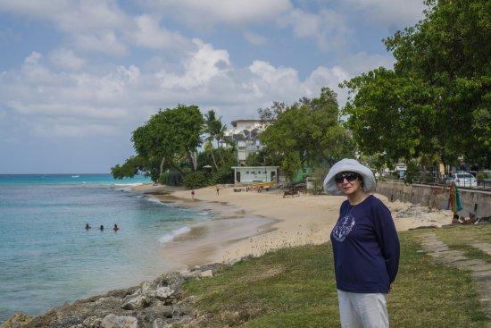 Carson's Taxi & Tour Service: Beach along the Platinum Coast
