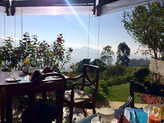 Madulkelle Tea and Eco Lodge: Breakfast view