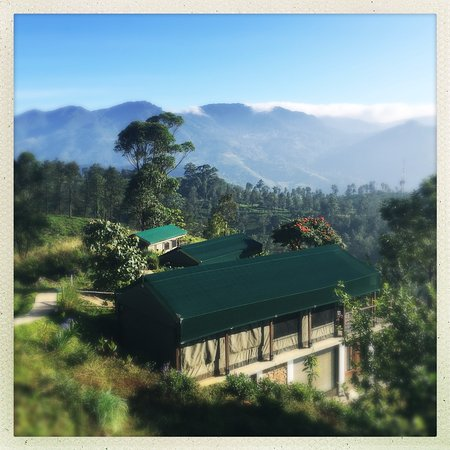 Madulkelle Tea and Eco Lodge: Tents