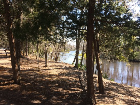 Live Oak Landing, an RVC Outdoor Destination: Beautiful clean campground