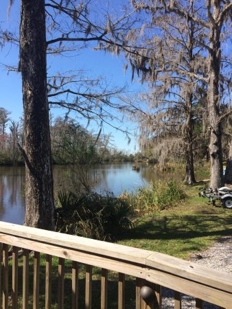 Live Oak Landing, an RVC Outdoor Destination: Beautiful clean campground