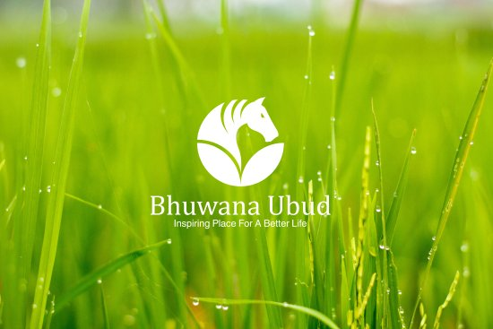 Bhuwana Ubud Hotel: Amazing Logo Rice Field View