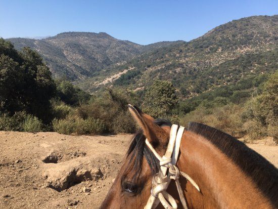 Cabalgatas Rancho Tudor