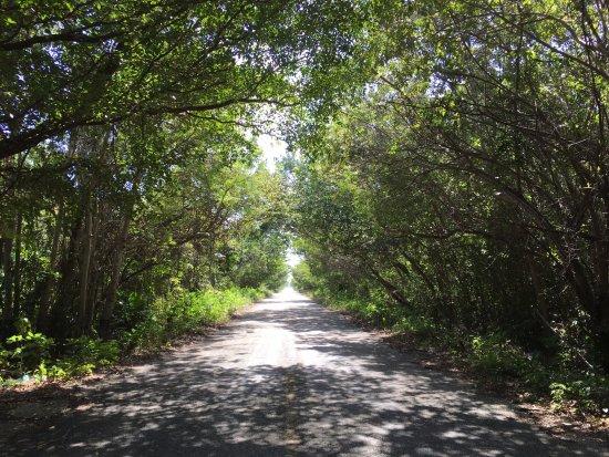 Sin Duda Villas: the road to SDV