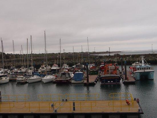 Kilmore Quay Harbour: harbour life 1
