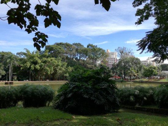 Bosque dos Buritis: otro foto del parque