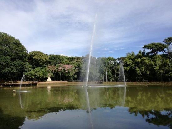 Bosque dos Buritis: Foto del lago y sus chorros de agua