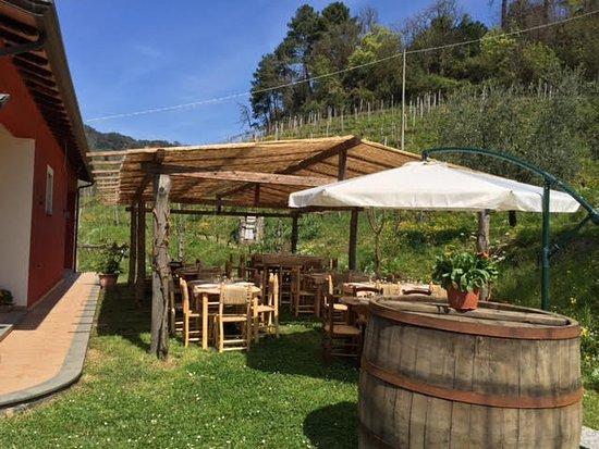 Cantina Boriassi: veranda
