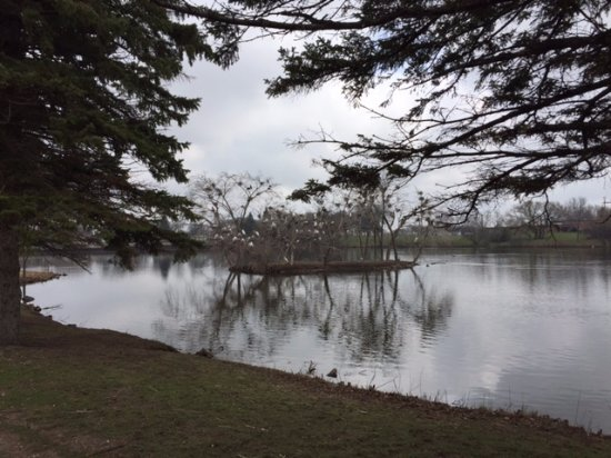 Otter Tail Scenic Byway: BEAUTIFUL AVIARY IN DOWNTOWN FERGUS FALLS