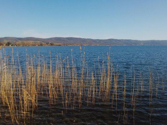 Bolsena, Italie : Canneto nel lago