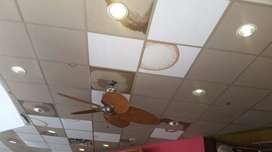 Tropical Smoothie Cafe: Do you really want to eat at a place with a leaky ceiling?