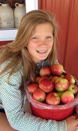 Ellsworth, MI: Honeycrisp Apples