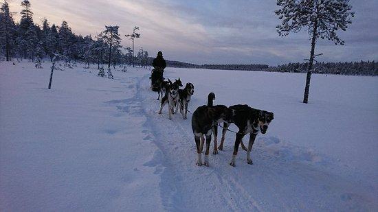 Ivalo, Finlande : DSC_3879_large.jpg