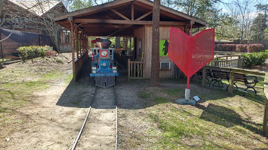 Hattiesburg Zoo : The little steam train that goes around the park.