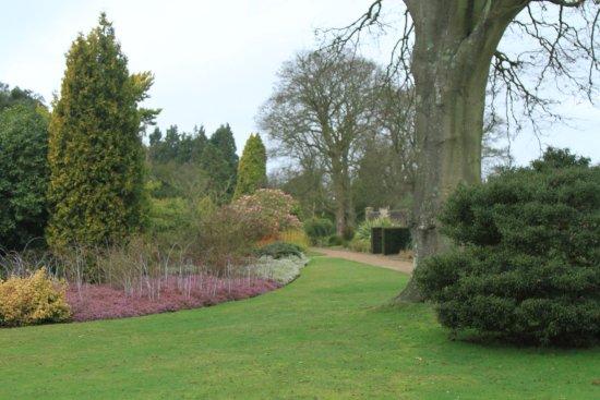 Wakehurst: Southern hemisphere garden