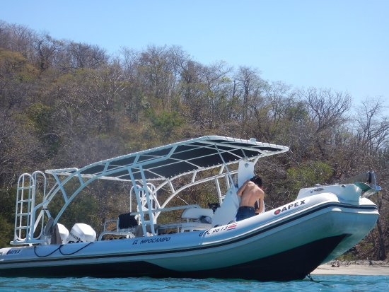 Seahorse Diving Tamarindo