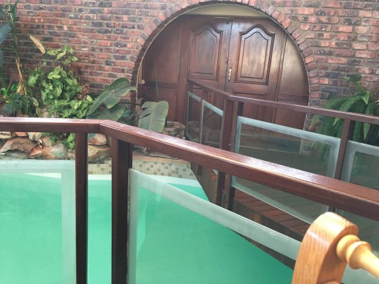 Dolphin View Guesthouse: photo1.jpg