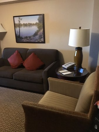 Embassy Suites by Hilton Sacramento - Riverfront Promenade: Living area