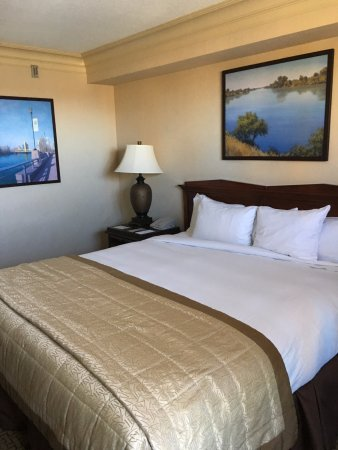 Embassy Suites by Hilton Sacramento - Riverfront Promenade: Bedroom