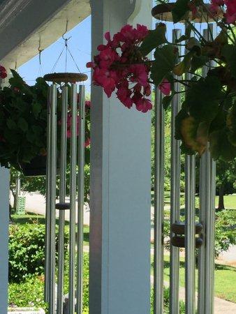 Oriental, Carolina del Norte: Cartwright House Bed and Breakfast