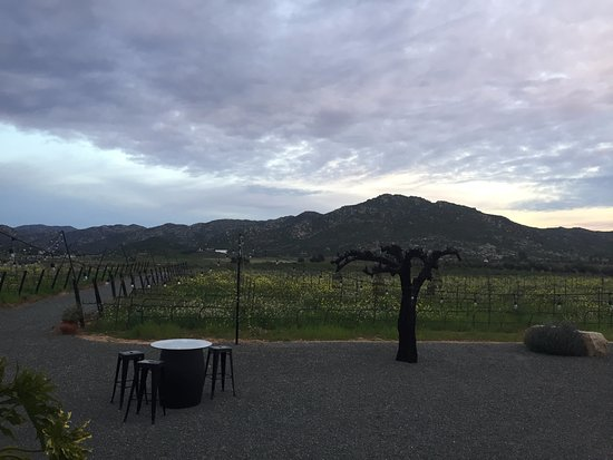Valle de Guadalupe, Mexico: Towards the end of the day. Beautiful!