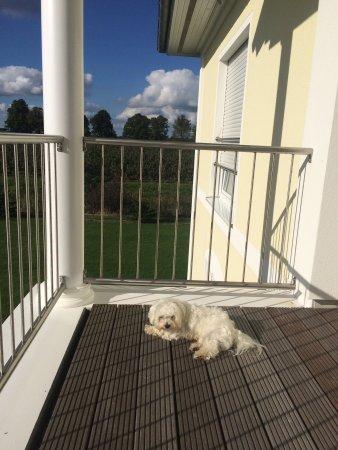 Jork, Tyskland: Hotel Villa Altes Land