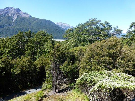 Arthur's Pass National Park, Selandia Baru: From balcony