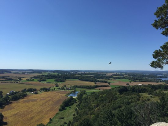 Lodi, WI: Birds of prey at Gilbraltar rock